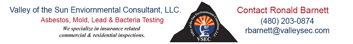 Valley of the Sun Environmental Consulting
